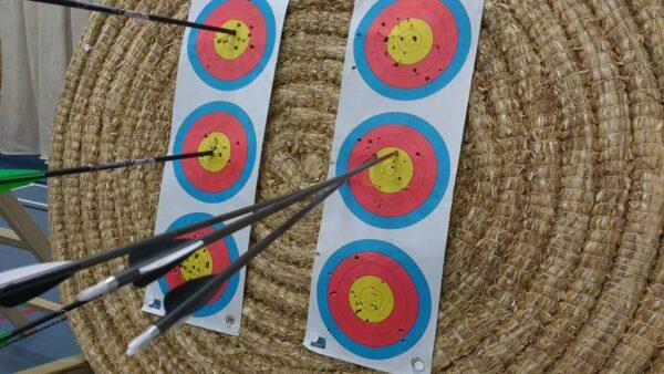 FITA 3 Spot Vertical 40cm Target